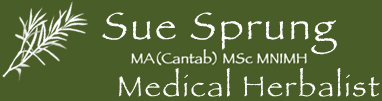 Medical Herbalist based in Liverpool